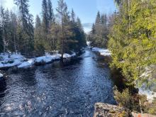 Dam Håsjøen 1.jpg