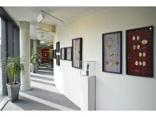 Paul-Wunderlich-Haus - Ausstellung