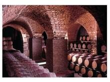 Chateau Musars vinkällare