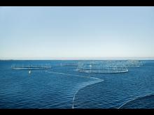 Merder havbruk.jpg