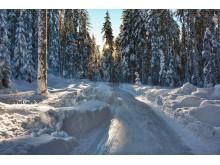 Eisweg Sur En