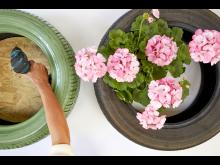 Pelargoner kreativa återbruksidéer