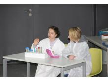 MINT-Förderung: 12. Tag der Naturwissenschaften für Schülerinnen und Schüler der 6. Klassen am 22. Februar 2018