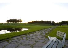 Skogskyrkogården: Stenlagd gång, granitkorset, Almhöjden till vänster och Minneslunden till höger.