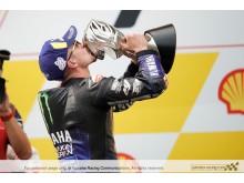 2019110401_001xx_MotoGP_Rd18_ビニャーレス選手_4000