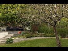 trädgård.jpg