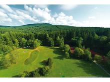 Natur pur: Blick aus dem Maritim Berghotel Braunlage