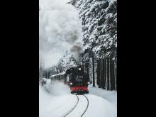 zwischen Sehmatal und Oberwiesenthal_Foto_TVE_Patrick Eichler
