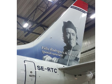 Rodríguez de la Fuente - Boeing 737 MAX 8 - detalle babor 2