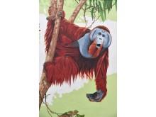 PI-Zoo-DARWINEUM-86-2017_WIRO-Wandgemälde_Orangs_Zoo Rostock_Kloock