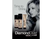Diamond Dust poster