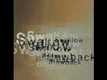 Swallow- Blowback.jpg