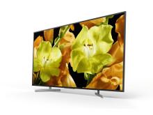 65 XG81 4K HDR TV (1)