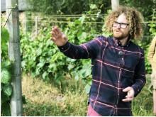 Vinbonden Victor Dahl på Kullabergs vingård tror på samarbete för att lyfta viner från området. Foto: Anna Lind Lewin.