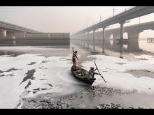 © Alessandro Gandolfi, Italy, Shortlist, Professional competition, Environment, Sony World Photography Awards 2021_6.jpg