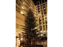 Weihnachten im Maritim Hotel Magdeburg