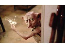 Harry Potter och Hemligheternas kammare11