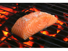 Norwegian salmon on the barbeque