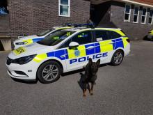 20190517-police-dog-goose-