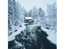 Alphaddicted_Lappland_03
