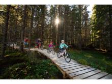 Gode nyheter for sykkelsatsingen