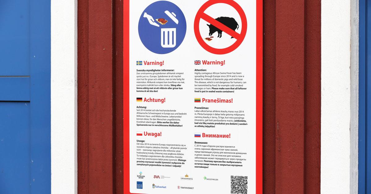 Rastplatsskyltar åtgärd i arbetet mot afrikansk svinpest