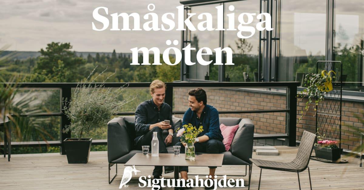 Smaskaliga Moten Pa Sigtunahojden Sigtunahojden Hotell Konferens