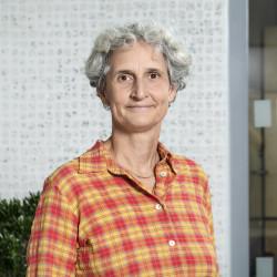 Ann Mattsson