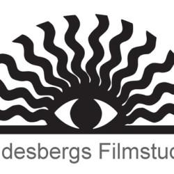Lindesbergs Filmstudio
