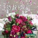 Mester Grønn feirer 35 år