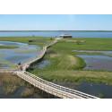 Nu öppnar naturum Hornborgasjön för säsongen