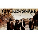 Chicken Snake: Southern voodoo-psych-blues supergroup exercise irresistible demons w/ LP 'Shapeshifter'