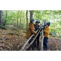 Stödstrumpan 2022 – Scouterna samlar pengar för att minska barns och ungas utanförskap i Sverige