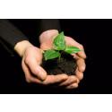 Bæredygtighed nyt pejlemærke i Rødovre