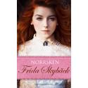Norrsken av Frida Skybäck