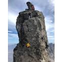 Mountain challenge is pinnacle of dog's Munro bagging