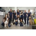 Evidensia inkluderer Dyresykehuset Dyrlegen Harstad: - Blir en del av ledende veterinærkjede