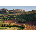 Årets släpp av storartade viner från Alto Moncayo