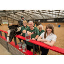 Rosette of approval for local horse-riding centre following AkzoNobel makeover
