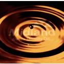 Uppgradering av oljenormeringar: ACEA C6 och A7/ B7