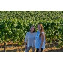 Fullmatad Chardonnay med stor lagringspotential från Marimar Torres