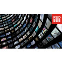 Red Bee Doubles OTT Customer Base and Delivers Rapid Growth in a Thriving Market