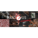 Julen flytter ind på Mantziusgaarden til Mantzius Julemarked 2019