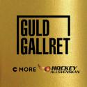 Det är dags för Guldgallret 2020 - HockeyAllsvenskans bästa junior ska utses!
