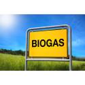Rekordstort intresse för biogas