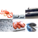Another record for Norwegian seafood exports in H1 2018