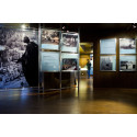 Nobel Peace Prize laureate exhibition goes to Brussels