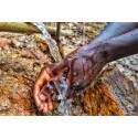 Zoégas satsar på solvatten i Uganda