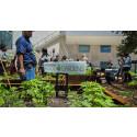 29 Oct KSLA Webinar: After the Food Systems Summit (FSS) – the way forward