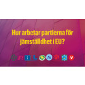 Stor jämställdhetsguide inför EU-valet